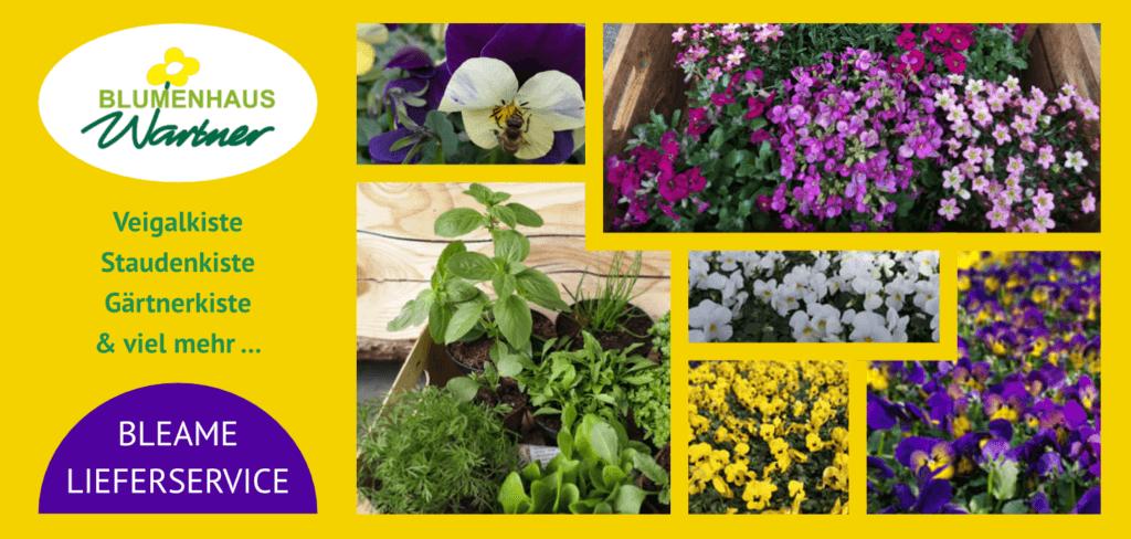 Lieferservice Wartner Blumen